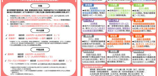 jigyou-saikouchiku-hojokin-leaflet2