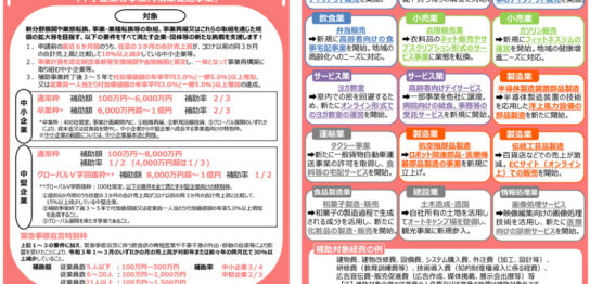 jigyou-saikouchiku-hojokin-leaflet3