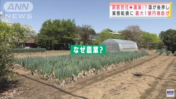 saikouchiku-nougyou-tv