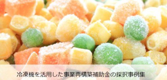 jigyou-saikouchiku-hojokin-reitouki